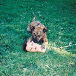 joyce manor cody album cover