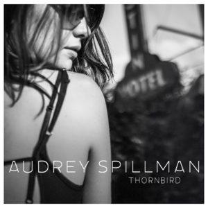 audrey-spillman-thornbird-cover